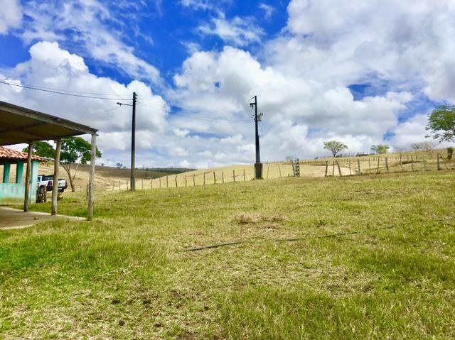 Fazenda em Boa Nova BAHIA com 167he - Foto 7