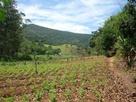 Fazenda rural à venda, Serra do Capim, Teresópolis. - Foto 17