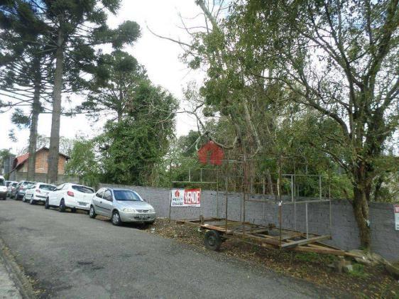 Terreno residencial à venda. - Foto 3