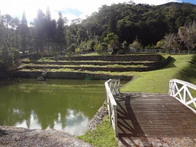 Sítio rural à venda, Córrego das Pedras, Teresópolis. - Foto 3