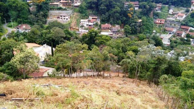 Terreno residencial à venda, Quinta da Barra, Teresópolis. - Foto 3