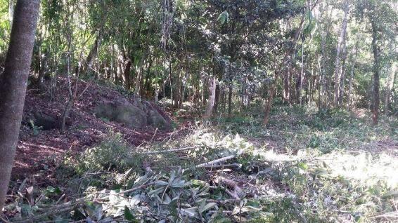 Terreno residencial à venda, Três Córregos, Teresópolis. - Foto 7