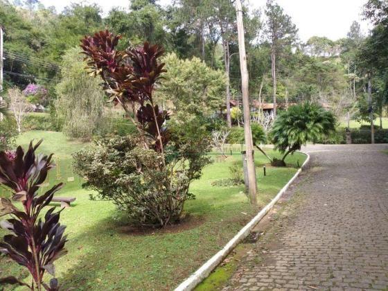 Terreno Teresópolis - Foto 6
