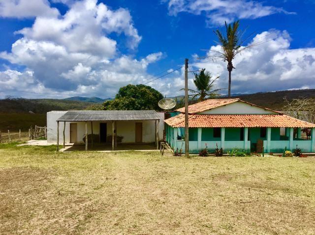 Fazenda em Boa Nova BAHIA com 167he