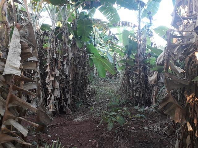 Chácara em Acorizal 38,2 hectares - Foto 13