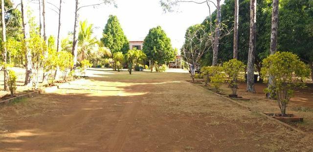 Fazenda 14alq Pronta Buritirana Palmas 1.2milh Ac Prop Airton - Foto 16