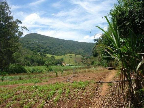 Fazenda rural à venda, Serra do Capim, Teresópolis. - Foto 20