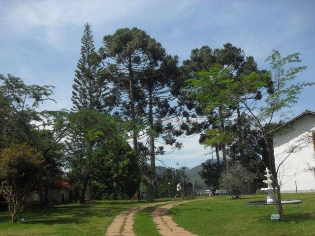 Sítiio em Teresópolis - Foto 10