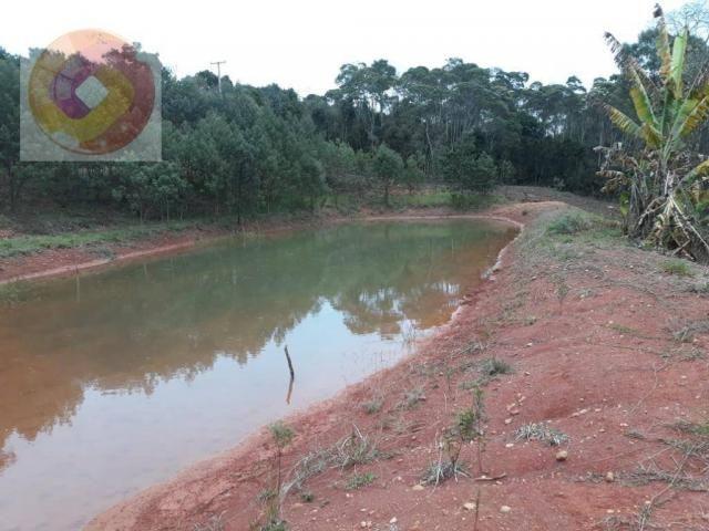 Chácara  à venda, 23000 m² por R$ 180.000 - Palmerinha - Campina Grande do Sul/PR - Foto 19