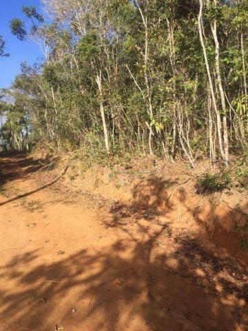 Terreno PLANO residencial à venda, Vargem Grande, Teresópolis. - Foto 5