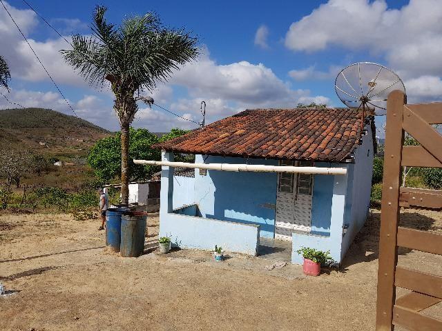 Sítio/Chácara Belo Jardim PE - Foto 3