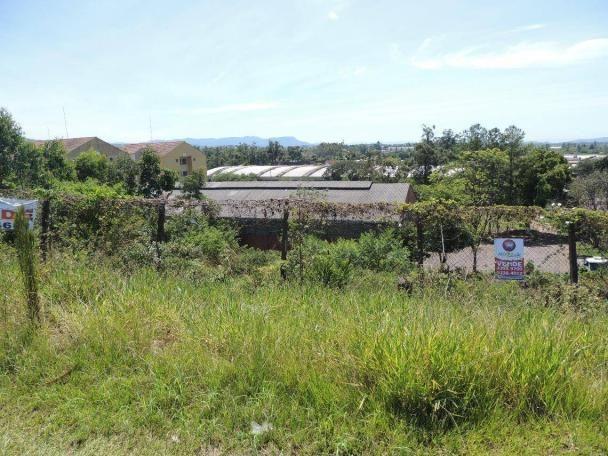 Terreno residencial à venda, canudos, novo hamburgo - te0412. - Foto 2