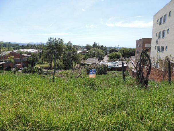 Terreno comercial à venda, canudos, novo hamburgo - te0413. - Foto 3