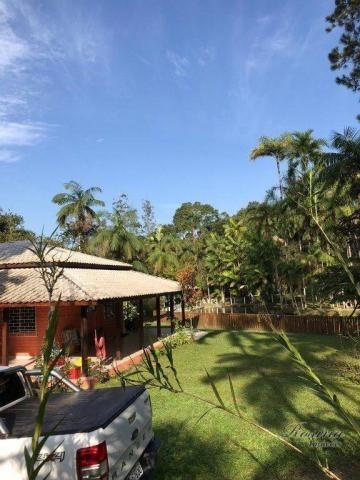 Chácara à venda, 81250 m² por R$ 1.100.000 - América de Cima - Morretes/PR - Foto 2