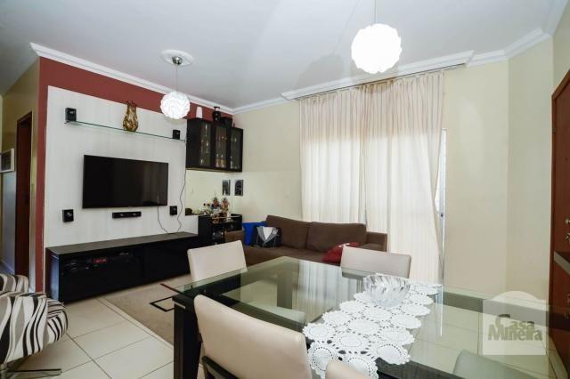 Apartamento à venda com 3 dormitórios em Alto caiçaras, Belo horizonte cod:255939 - Foto 3
