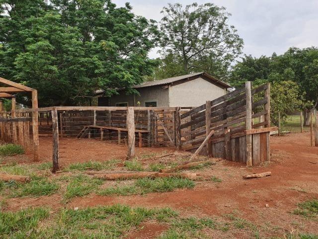 Chácara 08 hectares -próximo de C.Grande -Preço de 1.200.000 por 890.000 - Foto 18
