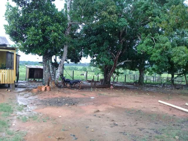 Vende-se fazenda - Foto 3