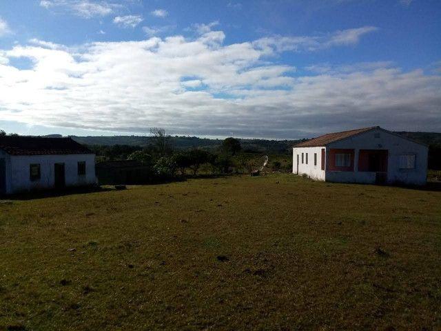 Propriedade rural em Canguçu - Foto 2