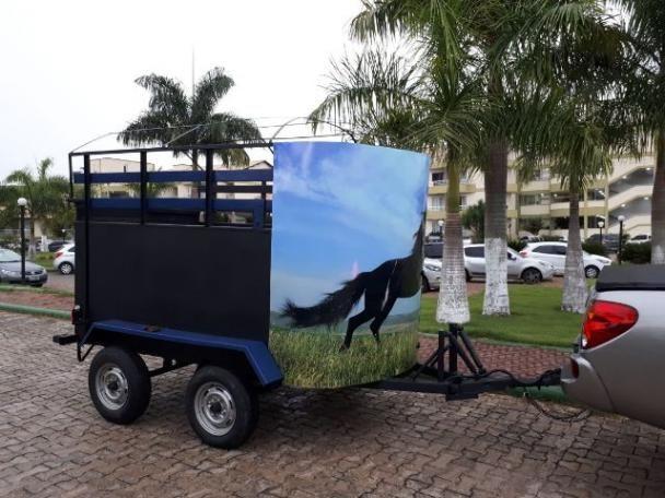 Linda Carretinha para 2 cavalos