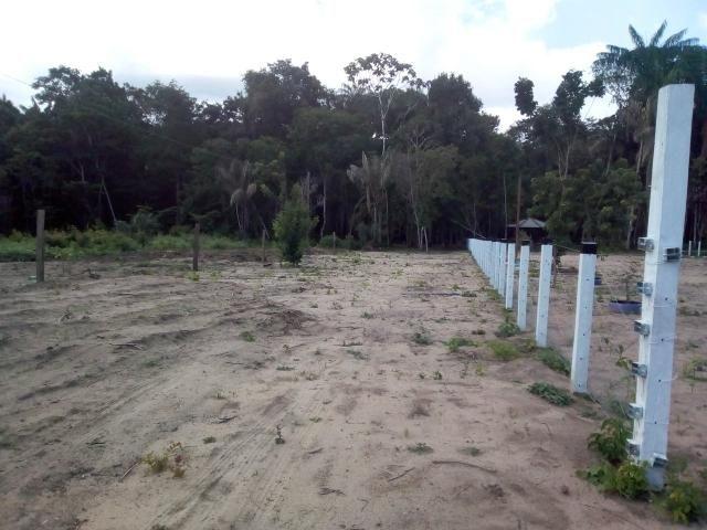 Terreno com Igarapé na comunidade de Centro Grande em Monte Alegre