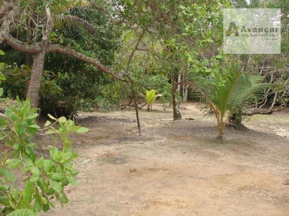 Chácara com 3 dormitórios à venda, 20000 m² por R$ 500.000,00 - Carne de Vaca - Goiana/PE - Foto 16