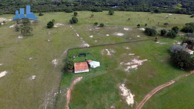 FAZENDA PARA GADO DE 14.950 HECTARES NA REGIÃO DE POCONÉ-MT - Foto 2