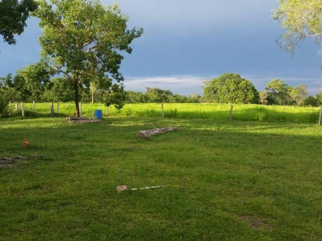 Sitio 120 hectares em Livramento - Foto 9