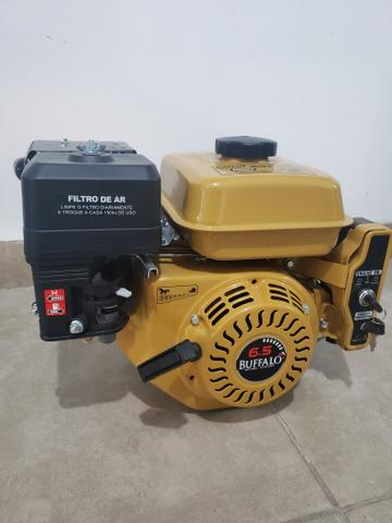Motor Buffalo 6.5 cv