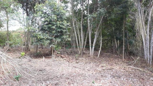 Terreno à venda, 1575 m² por R$ 150.000 - Fazenda Boa Fé - Teresópolis/RJ - Foto 7