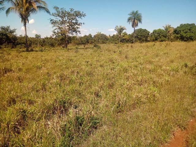 Chácara em Acorizal 38,2 hectares - Foto 9