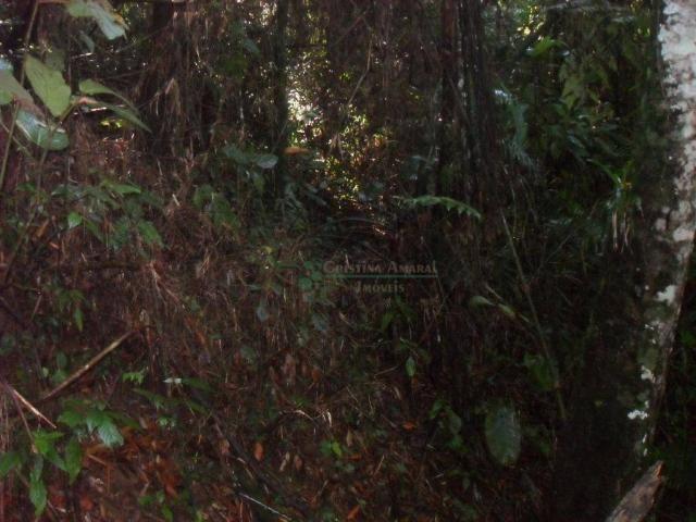 Terreno residencial à venda, Vargem Grande, Teresópolis. - Foto 8