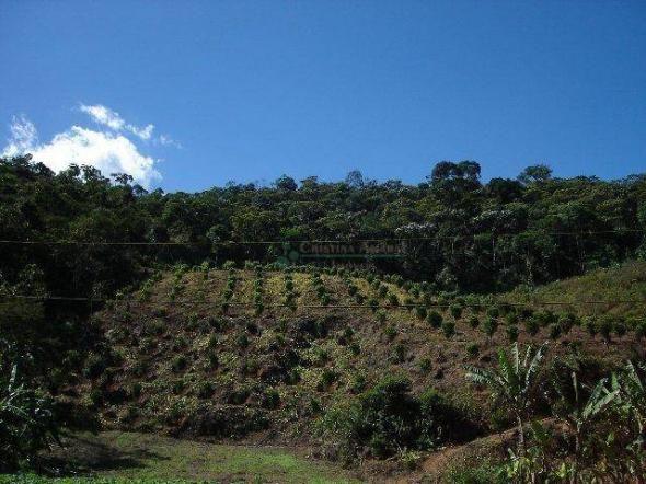 Área rural à venda, Providência, Teresópolis. - Foto 8