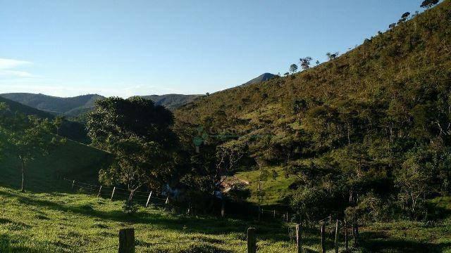 Fazenda rural à venda, Serra do Capim, Teresópolis. - Foto 14