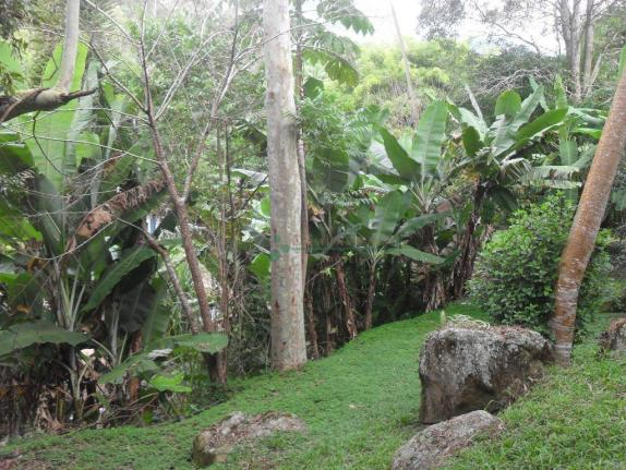 Sitio Teresópolis - Foto 16