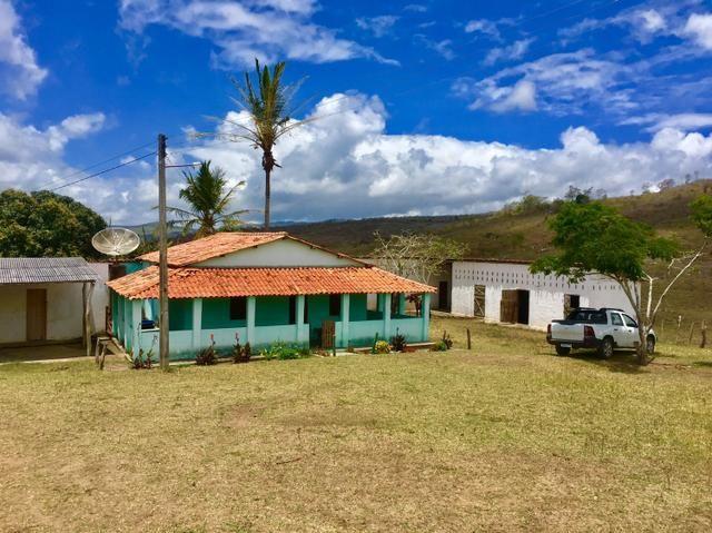 Fazenda em Boa Nova BAHIA com 167he - Foto 2