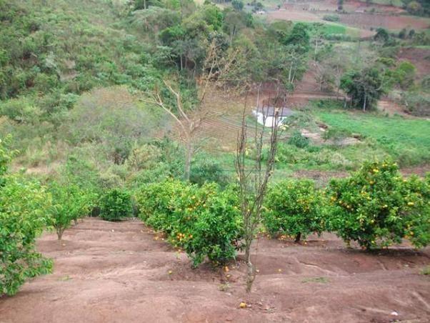 Sítio rural à venda, Vieira, Teresópolis - SI0071. - Foto 20