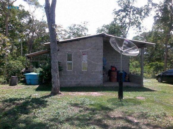 Chácara na Estrada de Cáceres à venda, 200000 m² por R$ 150.000 - Zona Rural - Cáceres/MT - Foto 3