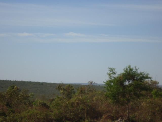 Fazenda 290,00 Hectares, Reserva do cabaçal-MT, aceita-se permuta. - Foto 2