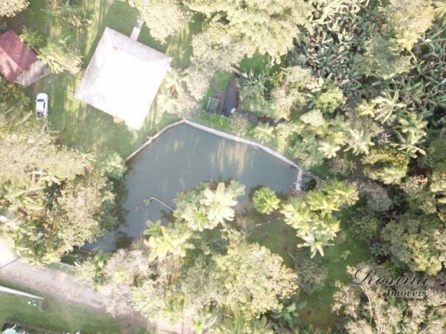 Chácara à venda, 81250 m² por R$ 1.100.000 - América de Cima - Morretes/PR - Foto 3