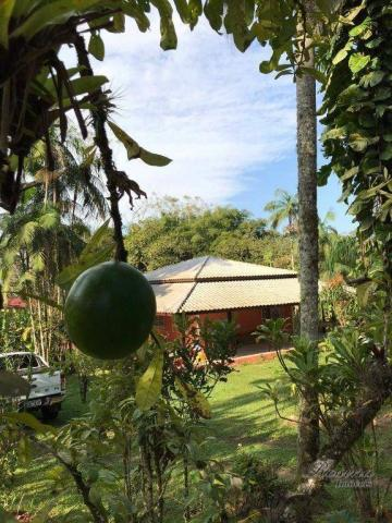 Chácara à venda, 81250 m² por R$ 1.100.000 - América de Cima - Morretes/PR - Foto 12