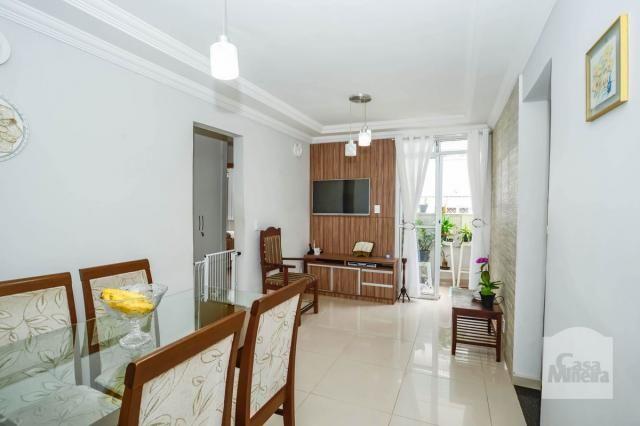 Apartamento à venda com 3 dormitórios em Caiçara-adelaide, Belo horizonte cod:250368 - Foto 2