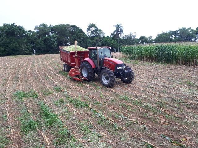 Carreta agrícola brasimp 8 toneladas - Foto 4