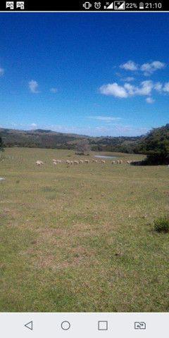 Propriedade rural em Canguçu - Foto 4