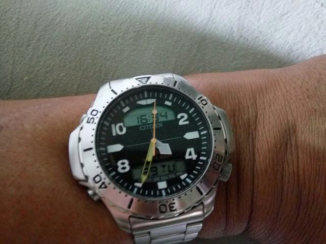 Citizen original aqualand