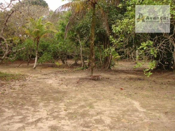 Chácara com 3 dormitórios à venda, 20000 m² por R$ 500.000,00 - Carne de Vaca - Goiana/PE - Foto 15