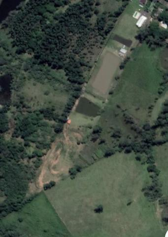 Sítio de 2,5 hectares - Foto 7