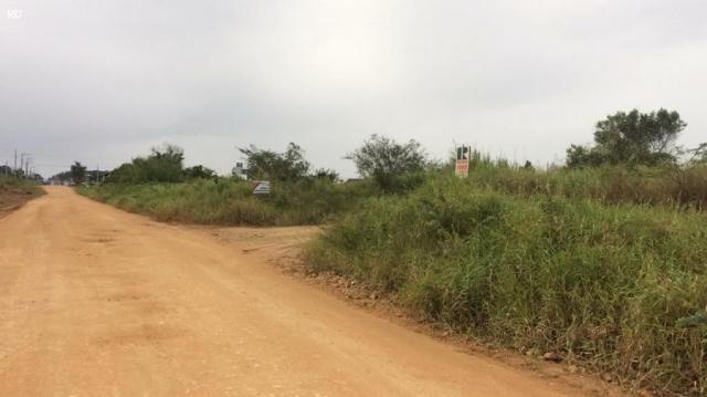 Terreno para venda em barra velha, itajuba - Foto 4