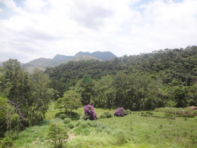 Sitio com 780.000 m² por R$ 1.150.000 - Ponte Nova - Teresópolis/RJ - Foto 15