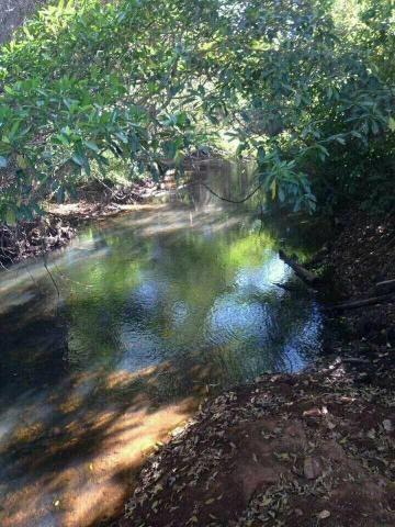 Fazenda 14alq Pronta Buritirana Palmas 1.2milh Ac Prop Airton - Foto 7