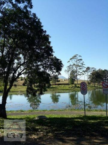 Terreno no Bosque Merhy, Quatro Barras. - Foto 7
